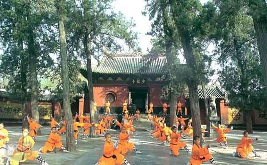 Student Educational China Tour - 12 Days Tour of Beijing, Xian, Luoyang, Zhengzhou, Shanghai